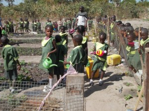 Gardening at Favour Preparatory nursery school 2013